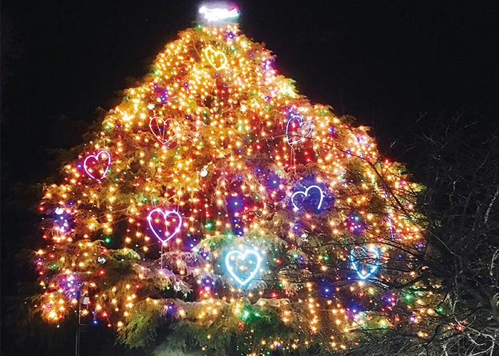 大きなクリスマスツリー|不妊治療HP