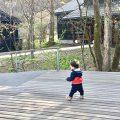 1歳の男の子が歩いている|不妊・マタニティケアHP